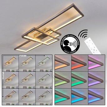 Plafonnier Momahaki LED Nickel mat, 1 lumière, Télécommandes