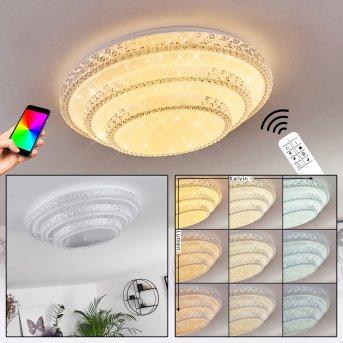 Plafonnier Roseto LED Blanc, Transparent, 1 lumière, Télécommandes