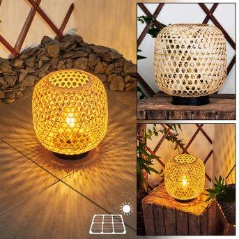 lampe solaire Conneaut LED Noir, Bois clair, 1 lumière