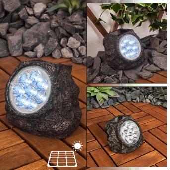 Lampe solaires Sameo LED Brun, 8 lumières