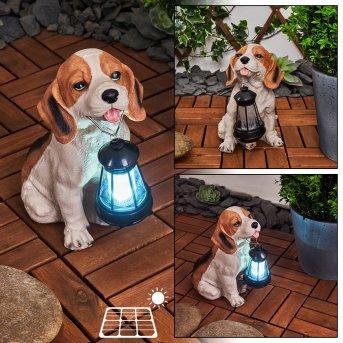 lampe solaire Sofie LED Noir, Blanc, Orange, 1 lumière