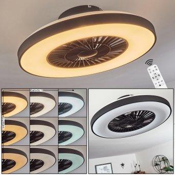 Ventilateur de plafond Qualiano LED Noir, Blanc, 1 lumière, Télécommandes