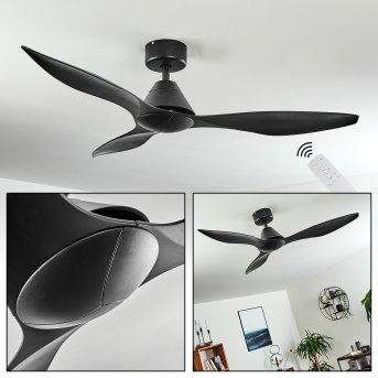 Ventilateur de plafond Bacugno Noir, Télécommandes