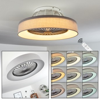 Ventilateur de plafond Moli LED Gris, Blanc, 1 lumière, Télécommandes