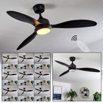 Ventilateur de plafond Chiapeto LED Noir, 1 lumière, Télécommandes