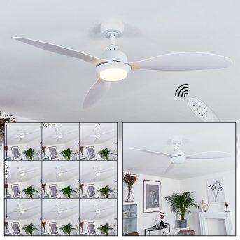 Ventilateur de plafond Chiapeto LED Blanc, 1 lumière, Télécommandes