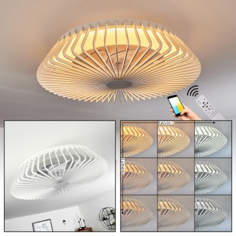 Ventilateur de plafond Rivarotta LED Blanc, 1 lumière, Télécommandes