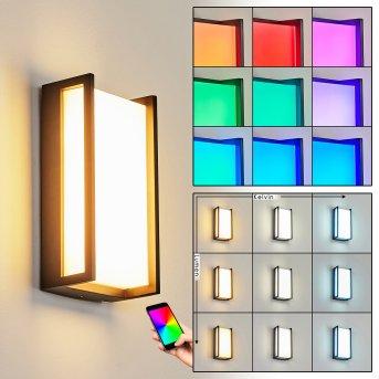 Applique murale d'extérieur Skove LED Anthracite, 1 lumière, Changeur de couleurs