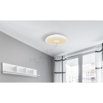 Plafonnier Globo RAFFY LED Noir, Blanc, 1 lumière, Télécommandes, Changeur de couleurs