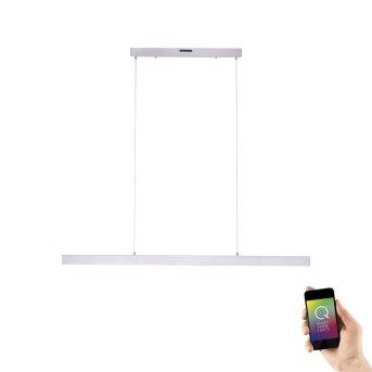 Suspension Paul Neuhaus Q-CORA LED Aluminium, 1 lumière, Télécommandes