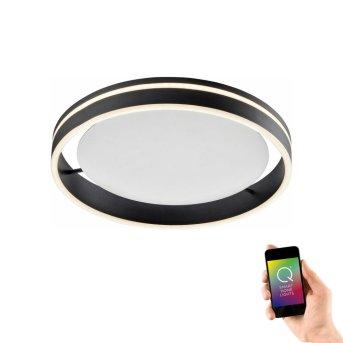 Plafonnier Paul Neuhaus Q-VITO LED Anthracite, 1 lumière, Télécommandes