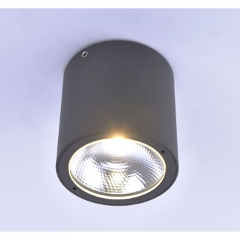 Plafonnier Paul Neuhaus GEORG LED Anthracite, 1 lumière