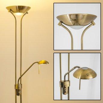 Lampadaire à vasque Rom LED Vieux laiton, 2 lumières