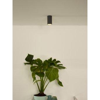 Spot de plafond Lucide DELTO LED Gris, 1 lumière