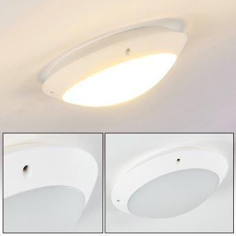 plafonnier extérieur Grafton Blanc, 1 lumière