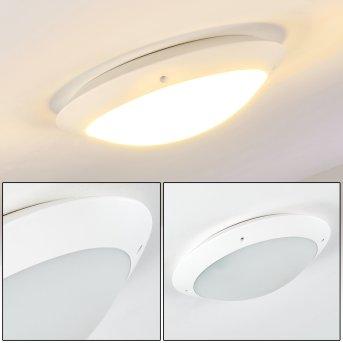 plafonnier extérieur Grafton Blanc, 2 lumières