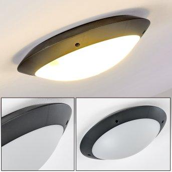 plafonnier extérieur Grafton Anthracite, 2 lumières