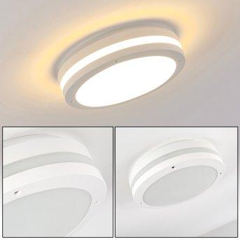 plafonnier extérieur Wollongong LED Blanc, 1 lumière