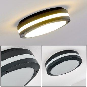 plafonnier extérieur Wollongong LED Anthracite, 1 lumière