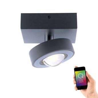 Plafonnier Paul Neuhaus Q-MIA LED Anthracite, 1 lumière, Télécommandes