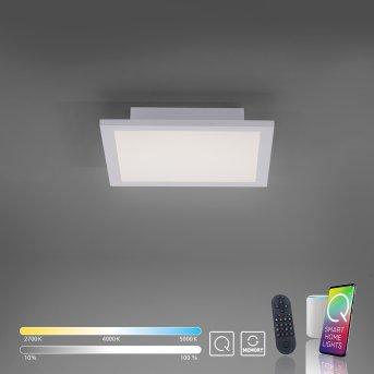 Plafonnier Paul Neuhaus Q-Flag LED Blanc, 1 lumière, Télécommandes