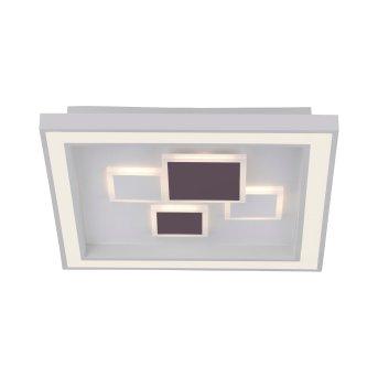 Plafonnier Paul Neuhaus ELIZA LED Blanc, 1 lumière