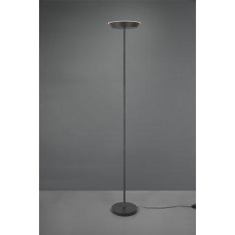 Lampadaire Reality Swona LED Noir, 1 lumière
