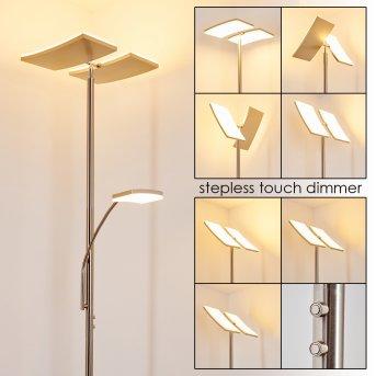 Lampadaire à vasque Thyolo LED Acier brossé, 2 lumières