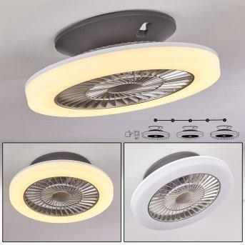 Ventilateur de plafond Somalia LED Argenté, Transparent, 1 lumière