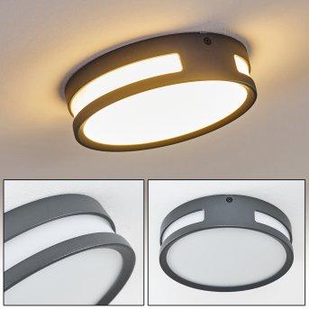 Lampe d'extérieur Chiavari LED Anthracite, 1 lumière