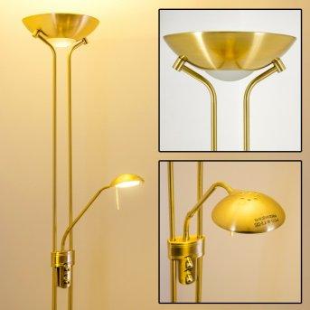 Lampadaire à vasque Rom LED Laiton, 2 lumières