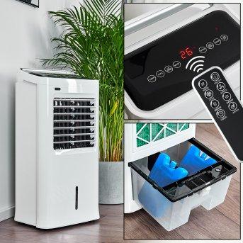 Ventilateur Scottsdale Blanc, Télécommandes